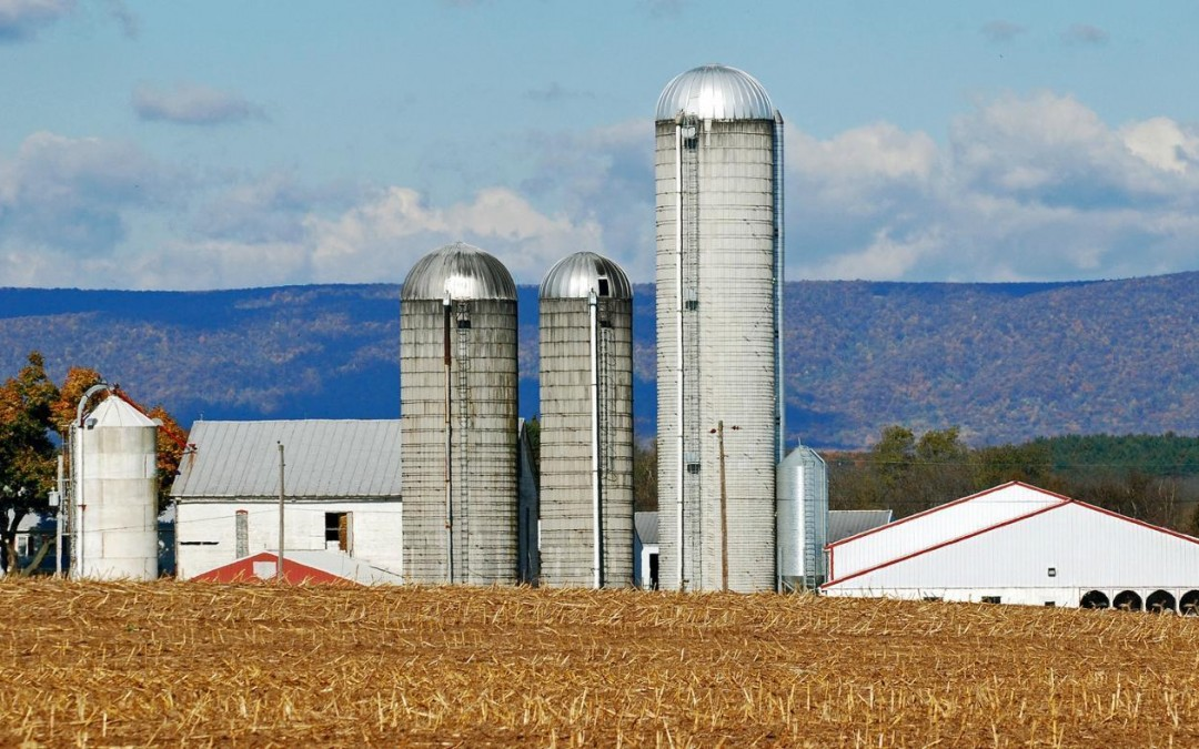 What Is A Silo Used For?
